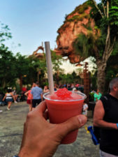 Boba Margarita in Pandora Disneys Animal Kingdom Disney World Orlando Florida 1