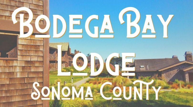 Bodgea Bay Lodge Landing