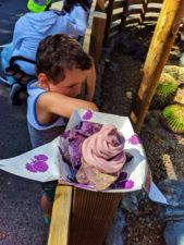 Boysenberry Ice Cream at Boysenberry Festival Knotts Berry Farm Buena Park California 2