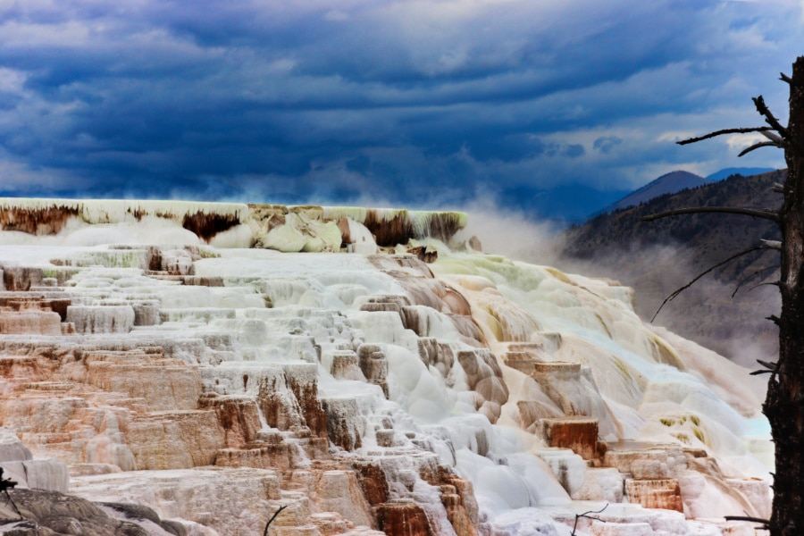 Canary Spring Mammoth Hot Springs Yellowstone National Park Wyoming 2
