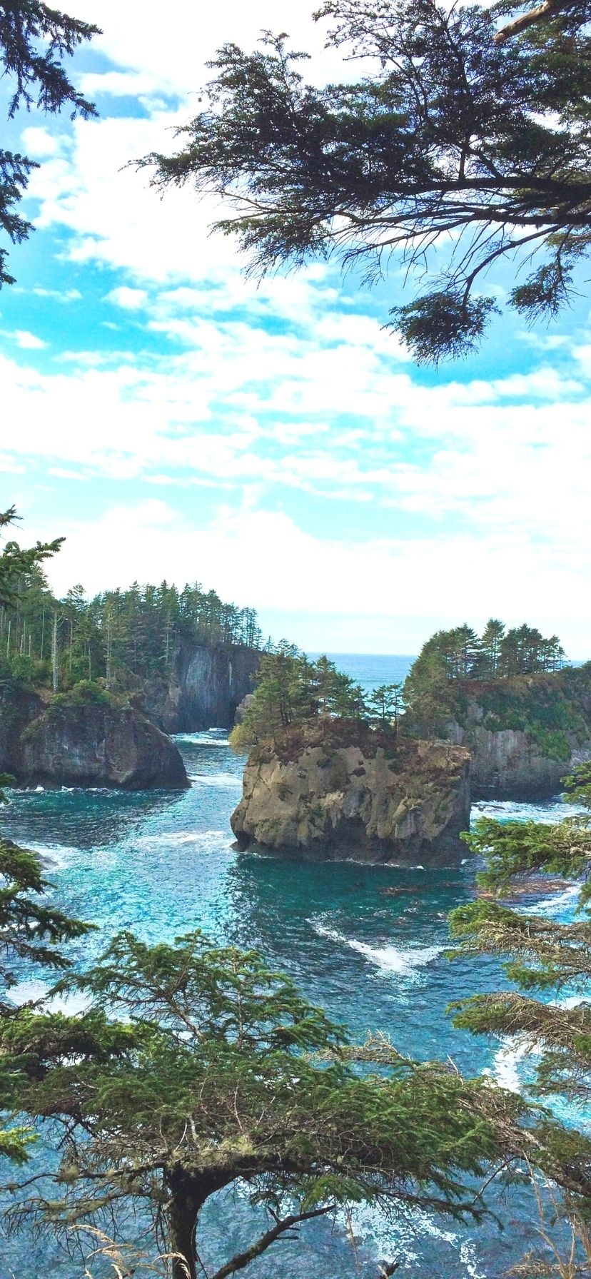 Cape Flattery Olympic Peninsula Things to Do