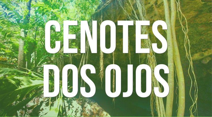 Cenotes Dos Ojos landing