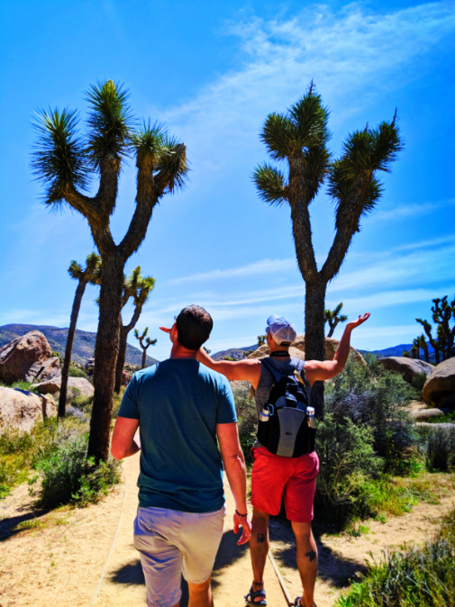 Chris and Rob Taylor Botanic Nature Walk at Cap Rock Joshua Tree National Park California 2
