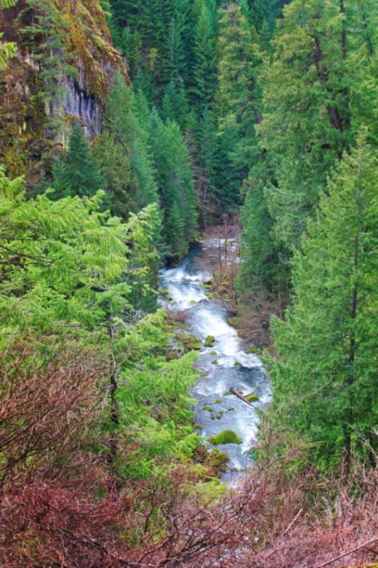 Churning gorge at Tokatee Falls Umpqua National Forest Oregon 2