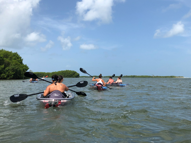 Clear Kayak Tour on Tampa Bay2_Marcea Cazel