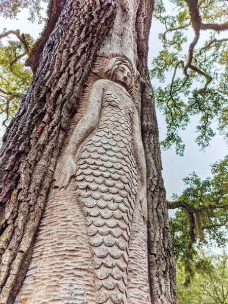 Cora the Mermaid Spirit Tree St Simons Island Golden Isles Georgia 1
