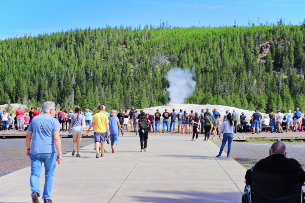 Crowds Gathering at Old Faithful Geyser Yellowstone National Park Wyoming 1