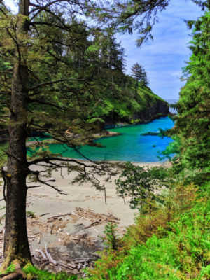 Deadmans Cove at Cape Disappointment State Park Ilwaco Washington 1