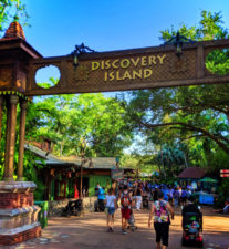 Discovery Island Disneys Animal Kingdom Disney World Orlando 1