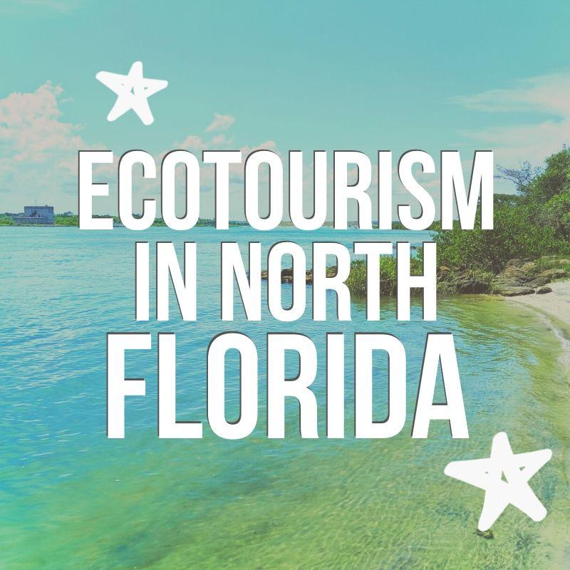 Ecotourism-in-North-Floridai-post-2.jpg