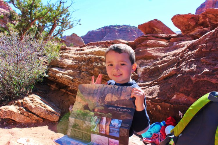 Elliott looking at map in Zion National Park Utah 3