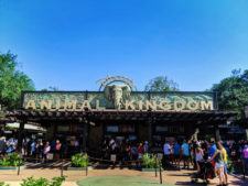 Entrance to Disneys Animal Kingdom Disney World Orlando Florida 1