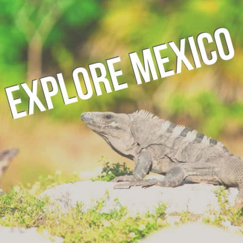 Explore Mexico button