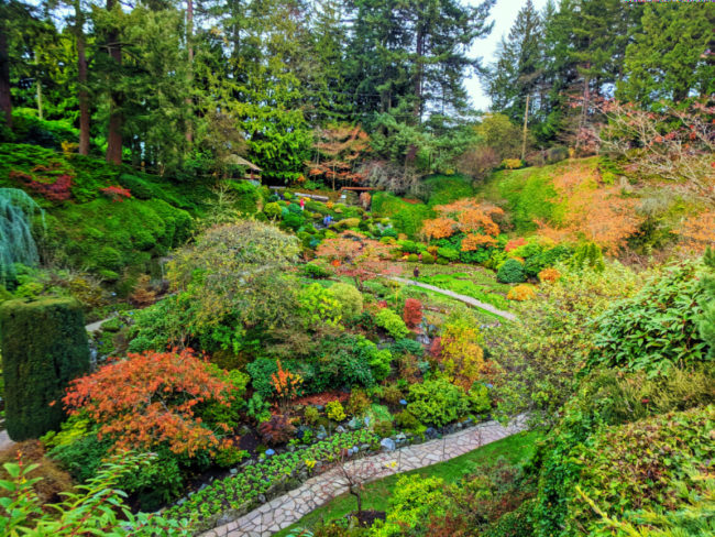 Fall Colors in Sunken Garden at Butchart Gardens Victoria BC 2
