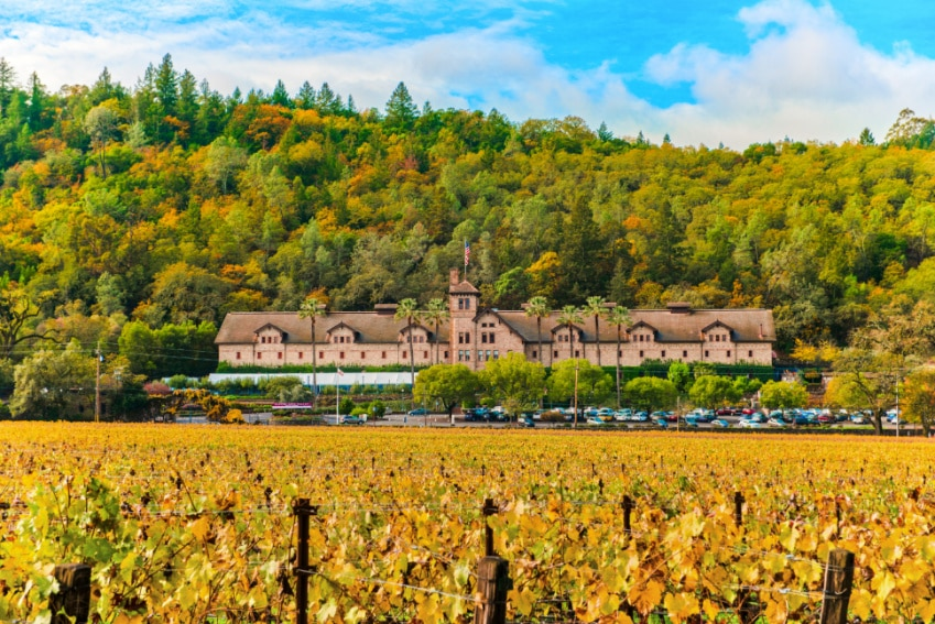 Fall at Culinary Institute of America Napa Valley 1