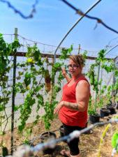 Farm tour at Luffa Farm Nipomo Santa Maria Valley California 1