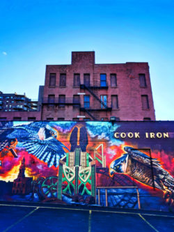 Flaming Falcon Street Art in Rochester New York 2