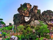 Floating mountains of Pandora Disneys Animal Kingdom Disney World Orlando Florida 5