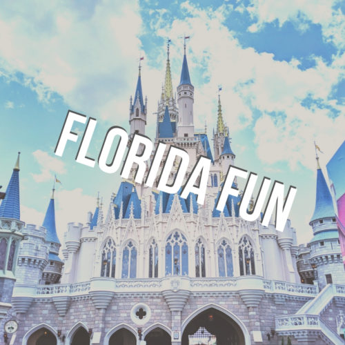 Florida Fun button