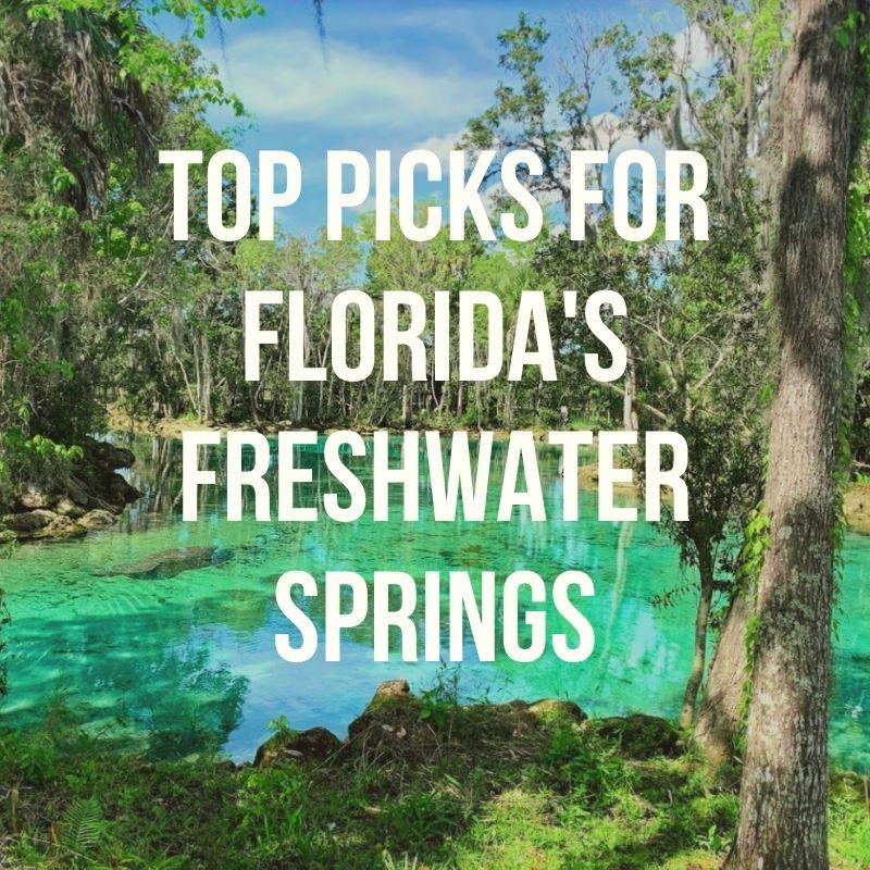 Florida Springs Podcast