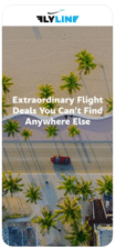 FlyLine-Save-on-Flights-on-the-App-Store-1-105x225.png