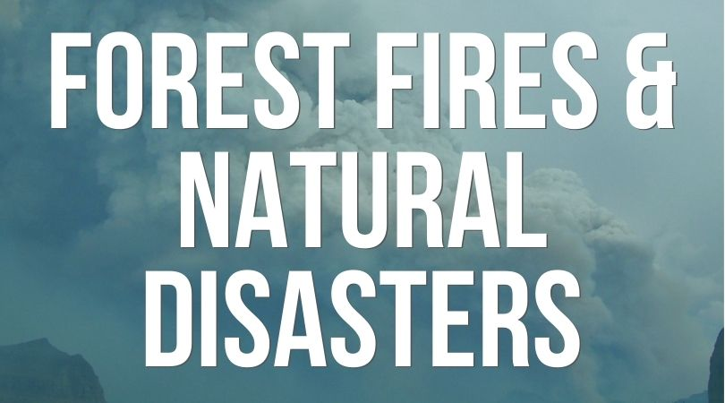 Prepping for Forest Fires and Natural Disasters