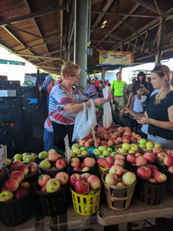 Fresh produce stands at Rochester Public Market 2