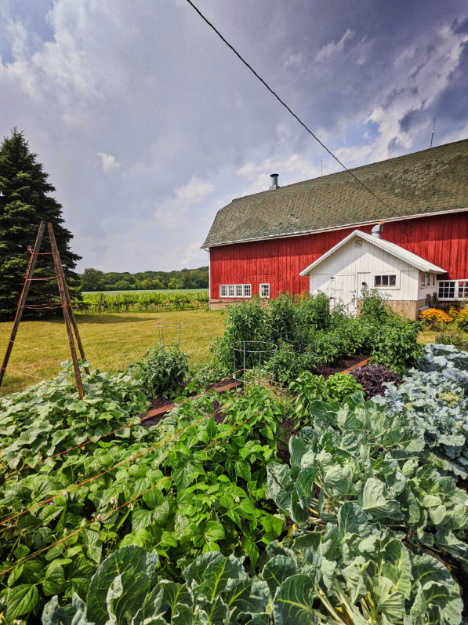 Garden at Farm in Delavan Lake Geneva Wisconsin 2