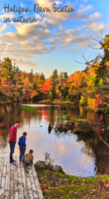 Fall Colours in Halifax, Nova Scotia - 30+ awesome things to do in Nova Scotia with kids, travel in Halifax, Lunenburg, Peggy's Cove, the Bay of Fundy and more. The road trip around Canada that's perfect for photography, history and fall colors. #NovaScotia #halifax #bayoffundy