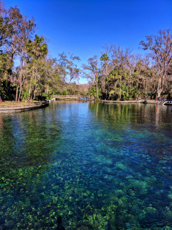 Headsprings at Wekiwa Springs State Park Central Florida 2