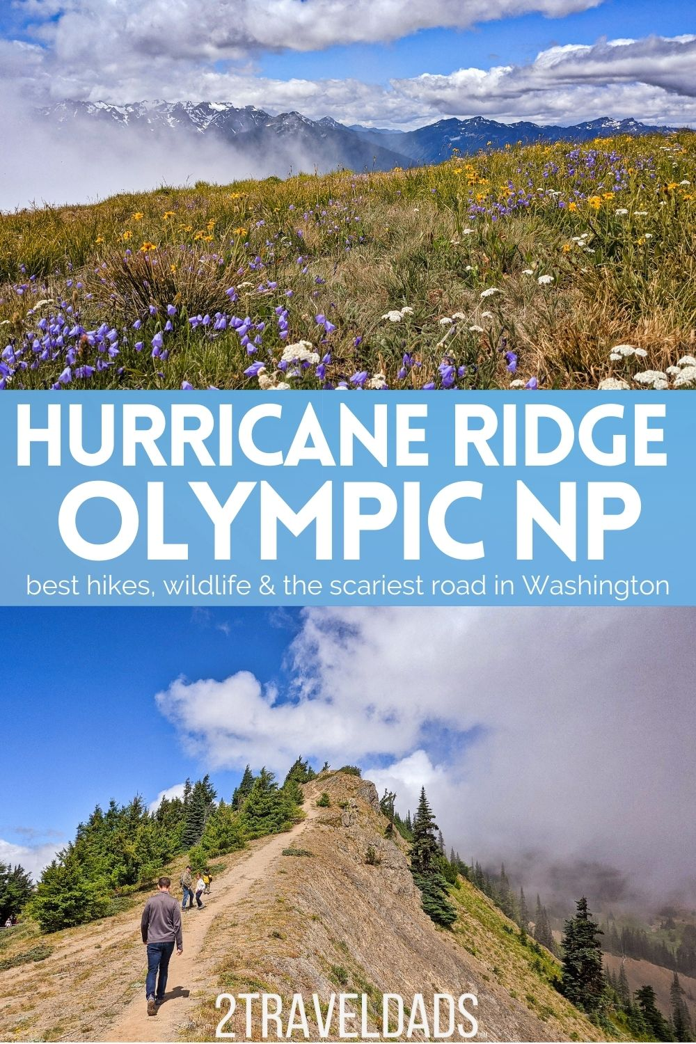 Hiking at Hurricane Ridge is one of the best day trips to the Olympic Peninsula. We've rated the trails rated from easiest to most difficult and included tips for visiting Hurricane Ridge any time of year.