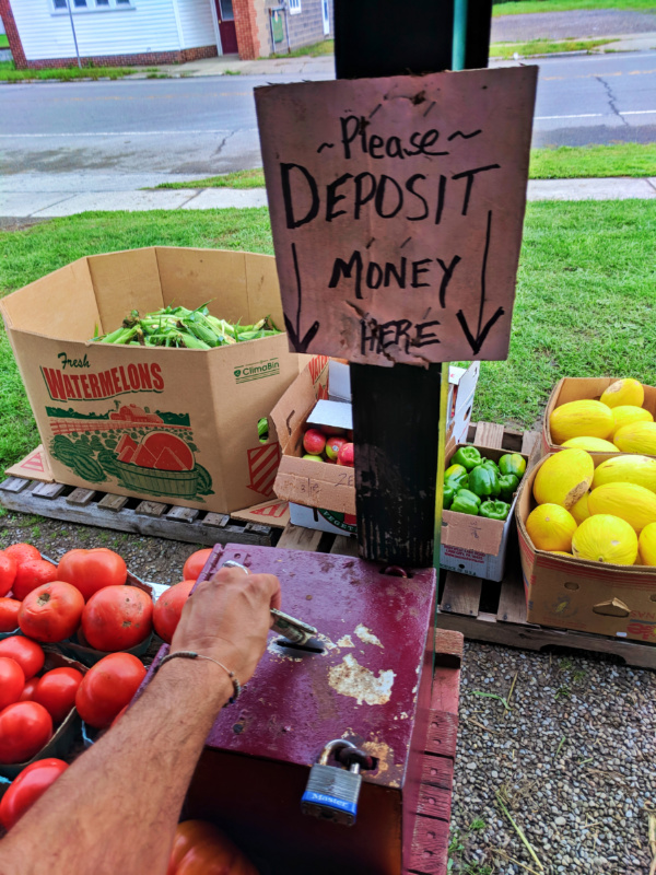Honor deposit farm stand outside Rochester New York 1