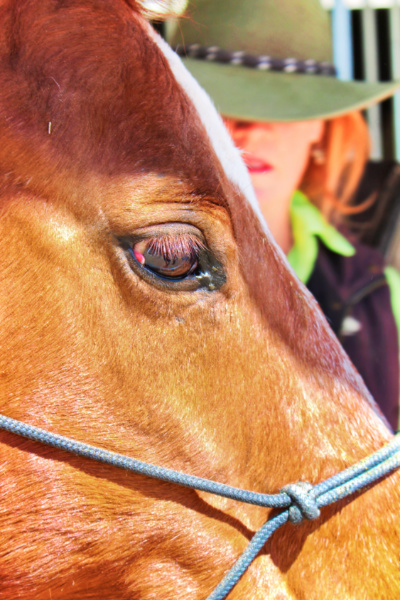 Horsewoman Jacklyn at Crazy Horse Ranch Morongo Valley Palm Springs California 2