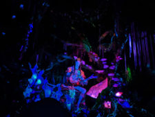 Inside Navi River ride Pandora Disneys Animal Kingdom Disney World Orlando Florida 1