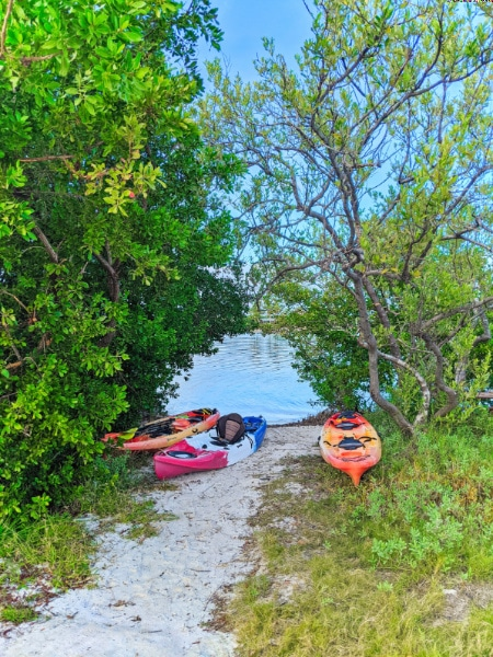 Kayak Launch at Curry Hammock State Park Fat Duck Key Marathon Florida Keys 2020 6