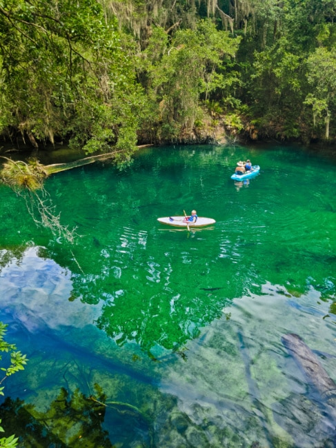 Kayaking at Blue Spring State Park Orange City Florida 2020 1