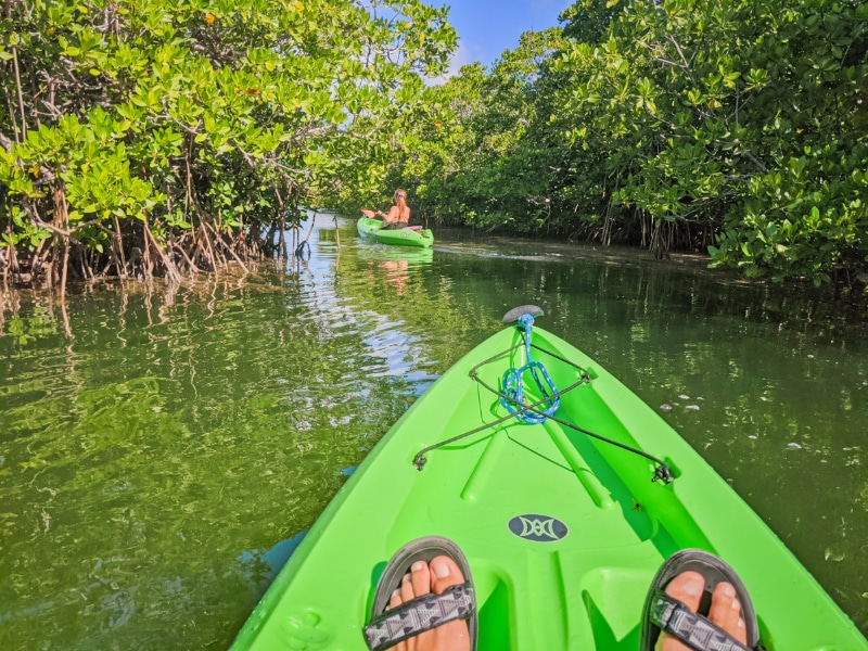 Kayaking at John Pennekamp Coral Reef State Park Key Largo Florida Keys 2020 2