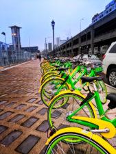 LimeBikes bike sharring in Seattle waterfront 1