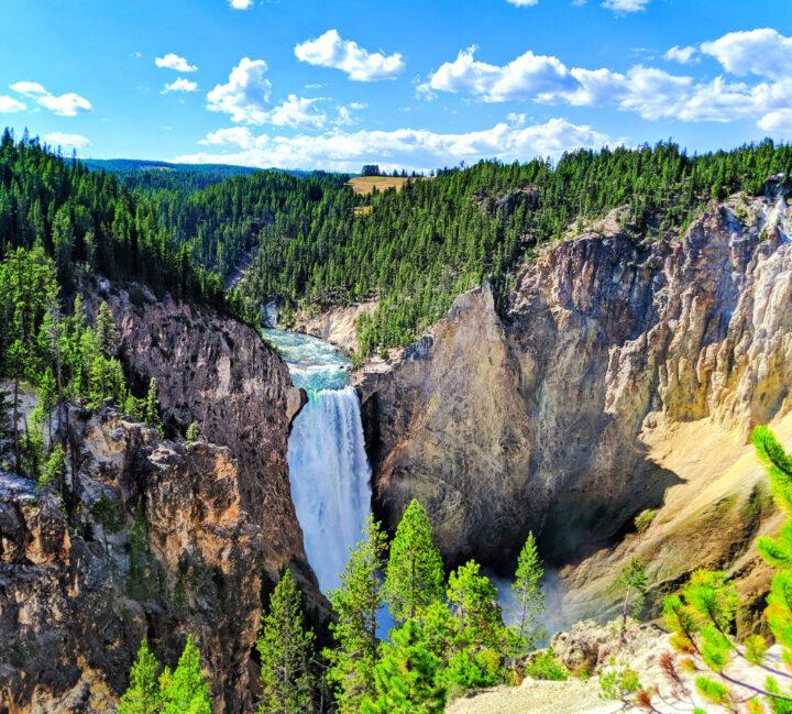 Lower Yellowstone Falls Grand Canyon of Yellowstone National Park 3