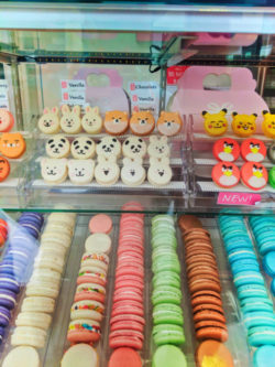 Macarons in bakery in The Source OC Buena Park California 1