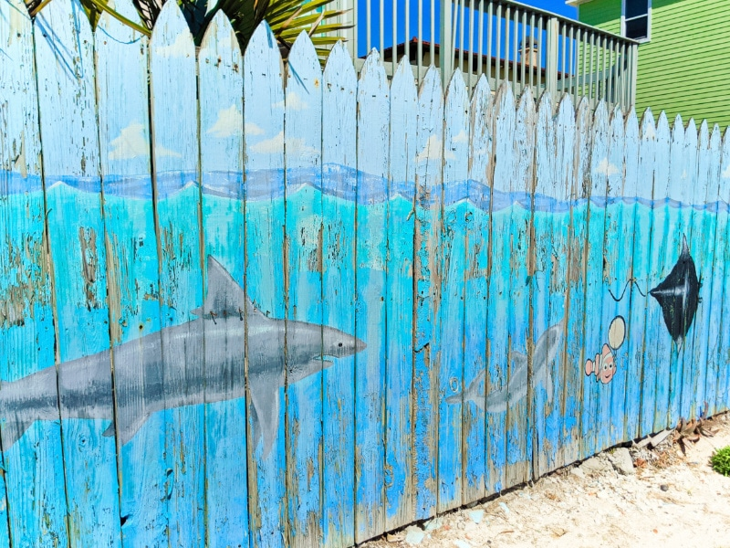 Marine Life Fence Mural at Butler Park East Butler Beach Florida 1