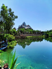 Mt Everest Disneys Animal Kingdom Disney World Orlando Florida 2