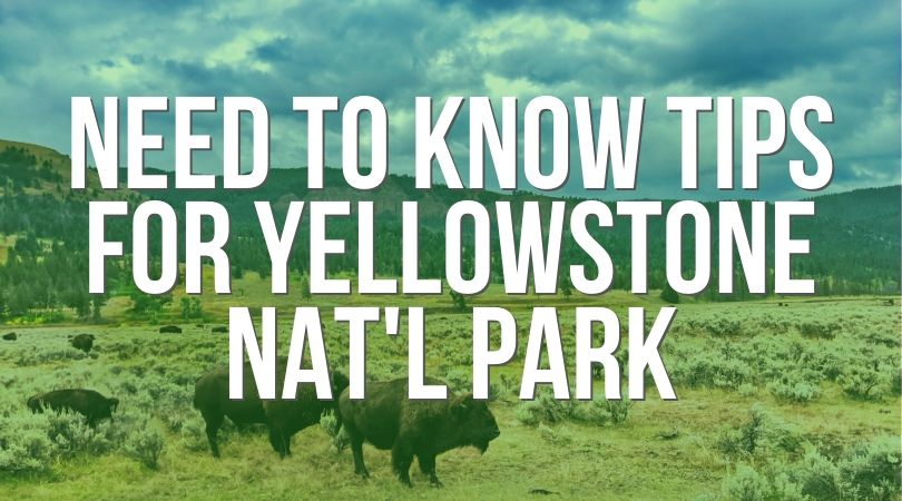 Podcast episode covering the best need-to-know Yellowstone National Park tips. From where to camp to where to stay outside of the park, favorite sights and things to watch for, the basics of having an awesome trip, and some of our favorite stories through the years. #Yellowstone #NationalPark #Wyoming