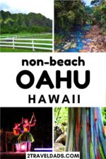 There are plenty of non-beach activities on Oahu to create an unforgettable family Hawaiian vacation. From hiking to waterfalls in the jungle to Hawaiian food, so much to do and see around Oahu away from the beach.