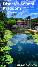 Disney's Animal Kingdom itinerary: one day plan and tips for dining, best safari times, guide to Pandora and which shows are best to save time and cool off. #Disney #disneyworld #animalkingdom #travel #itinerary