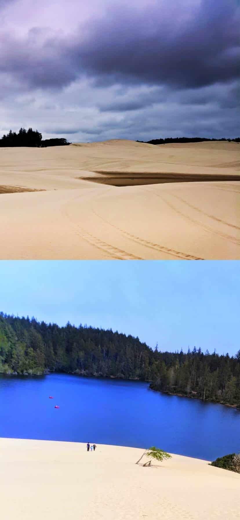 Oregon Dunes Oregon Coast Road Trip