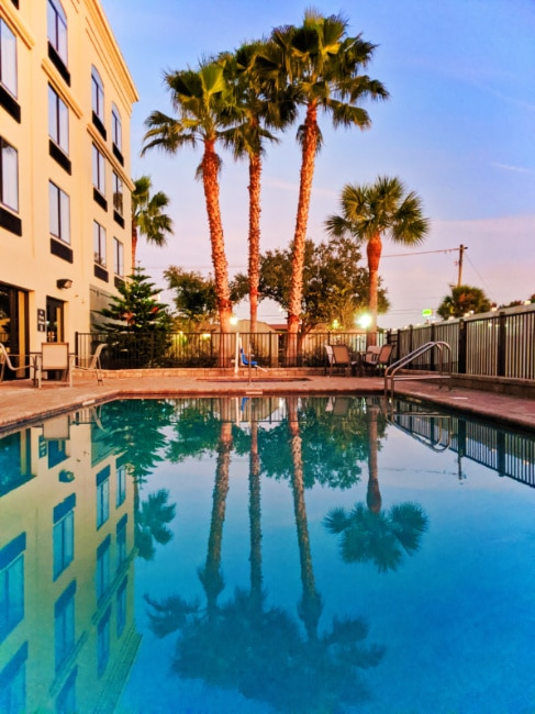 Palm Trees and Swimming Pool at BW Plus St Augustine I 95 1