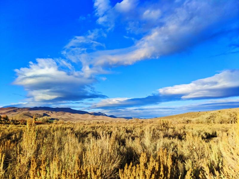 Prairie in Autumn at Riverview Park Carson City Nevada 2020 1