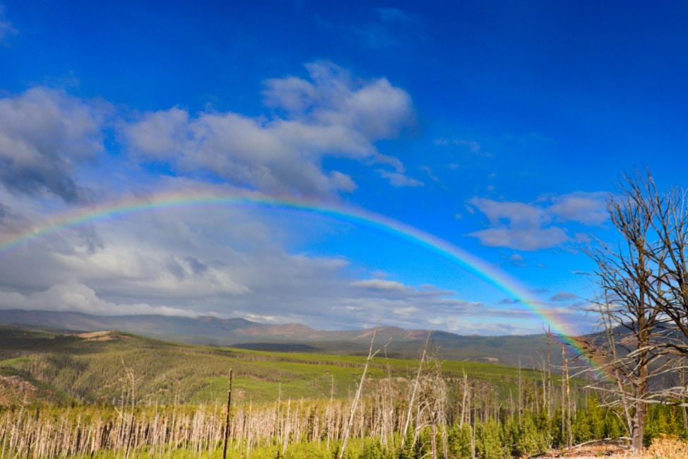 Rainbow from Mt Washburn Yellowstone National Park 5