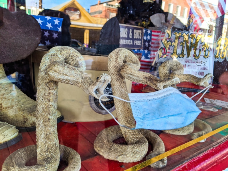 Rattlesnakes and PPE Mask Window Display Virginia City Nevada 2020 2
